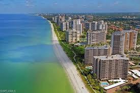 parkshore gulf condos